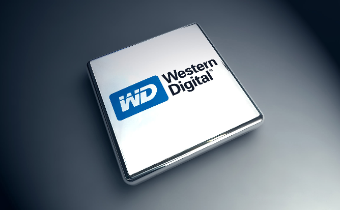 Quick Gains In Western Digital Calls