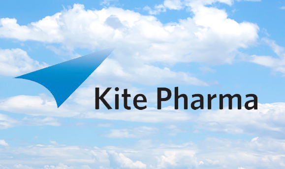 Bulls Flying High With Kite Pharma