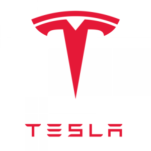 Option Traders Ride The Profit In $TSLA